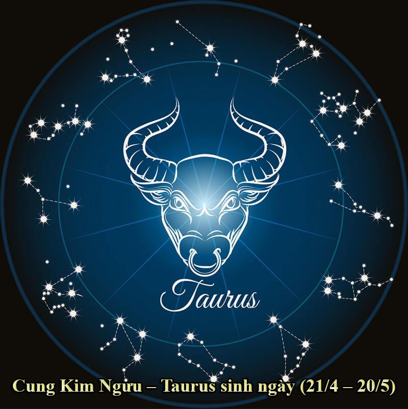 Cung Kim Ngưu – Taurus sinh ngày (21/4 – 20/5)